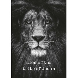 Metal Deco A3 'Lion of the tribe of Judah'