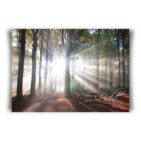 Poster A3 'De Heer is jouw licht' - MA11372 - Posters A3
